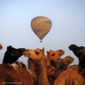 Pushkar fair_5